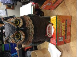 Picture of Zapper easy Gardner electric owl new . 845867-1.